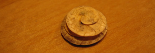Spiraldynamik ®